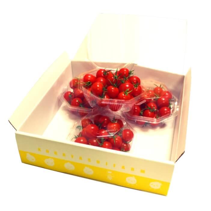 贈り物美味しいミニトマトギフト