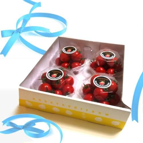 贈り物内祝い贈答トマトBOX