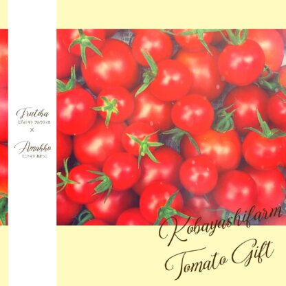 長野県産たべくらべギフトトマト