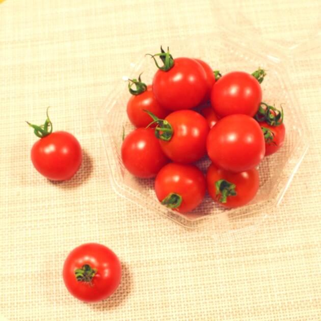 おこさまに美味しいフルーツトマトギフト