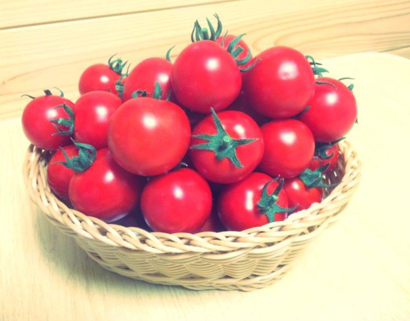 子どもでも食べられる野菜真っ赤なトマト