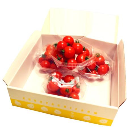 贈り物美味しいトマトフルティカギフト