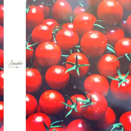 信州根羽村の真っ赤なおいしいミニトマト
