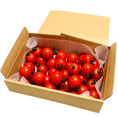 小林農園お得トマトフルティカ初回限定1kg