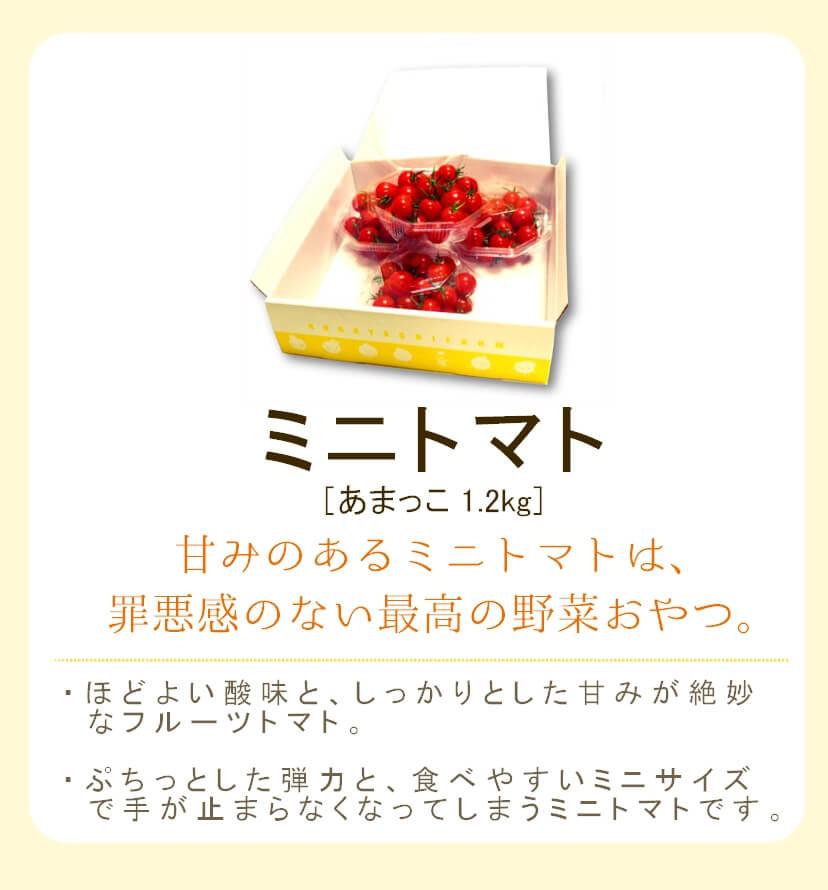 フルーツトマトのギフト