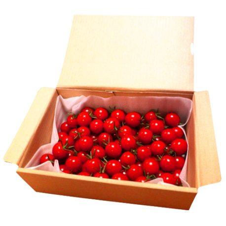 小林農園ミニトマトあまっこ1.2kgボックス