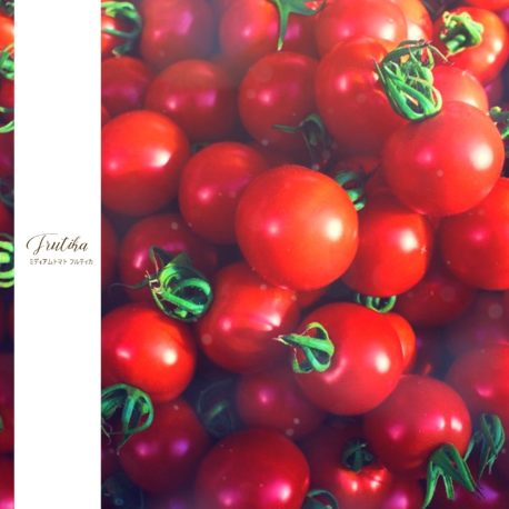 信州根羽村の真っ赤な完熟トマト