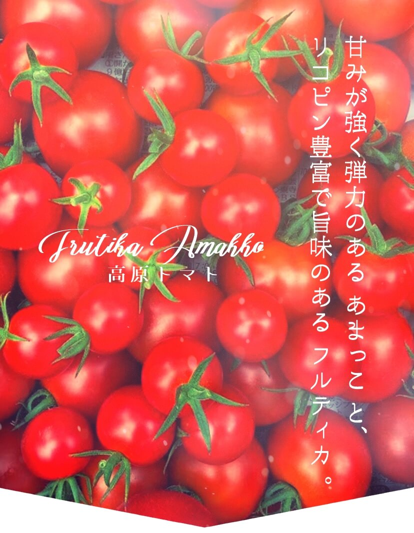 人気の高原トマトMIXトマト