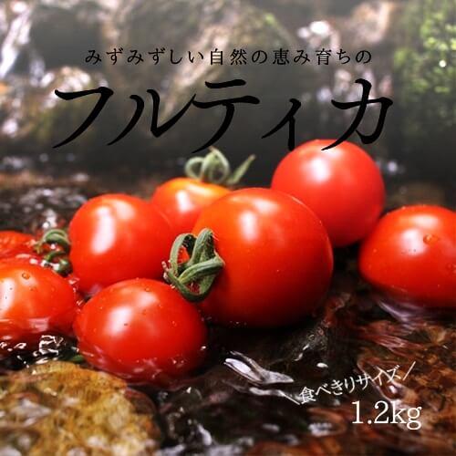 小林農園ミディアムトマトフルティカ矢作川
