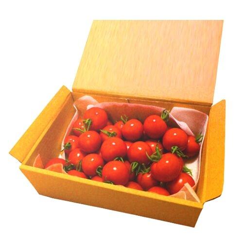 小林農園ミディアムトマトフルティカ1.2ボックス