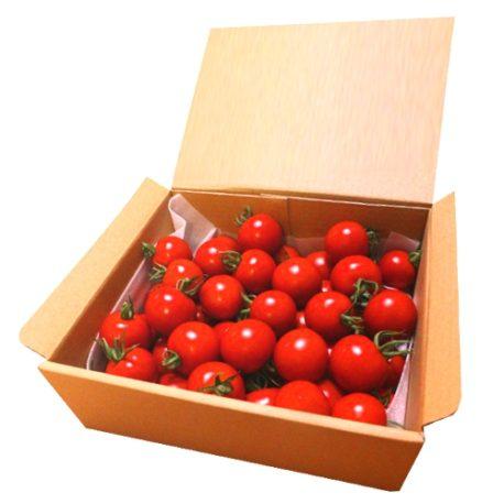 小林農園ミディアムトマトフルティカ1.8ボックス