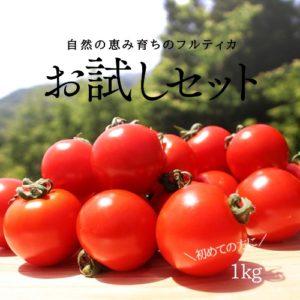 小林農園ミディアムトマトフルティカ1お試し