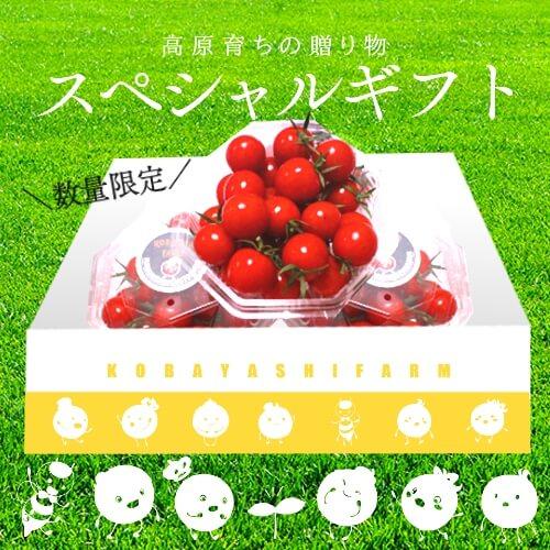 小林農園ミニトマトあまっこ大切な人に贈りたいギフト