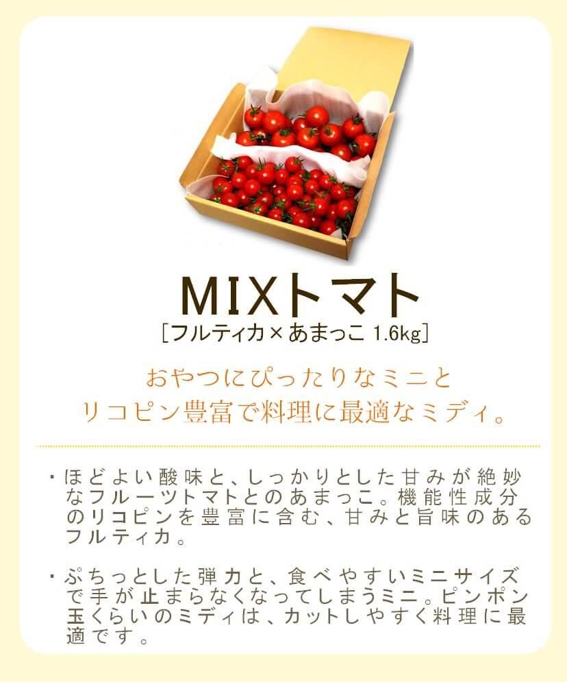 小林農園の贅沢MIXトマト