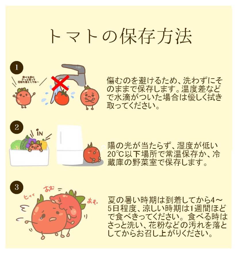 農家直伝トマトの保存方法