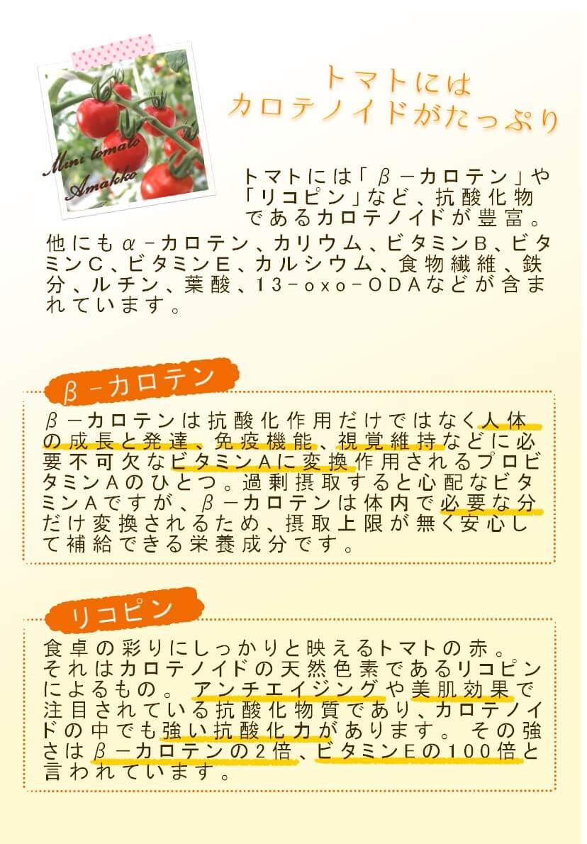 トマトの栄養成分