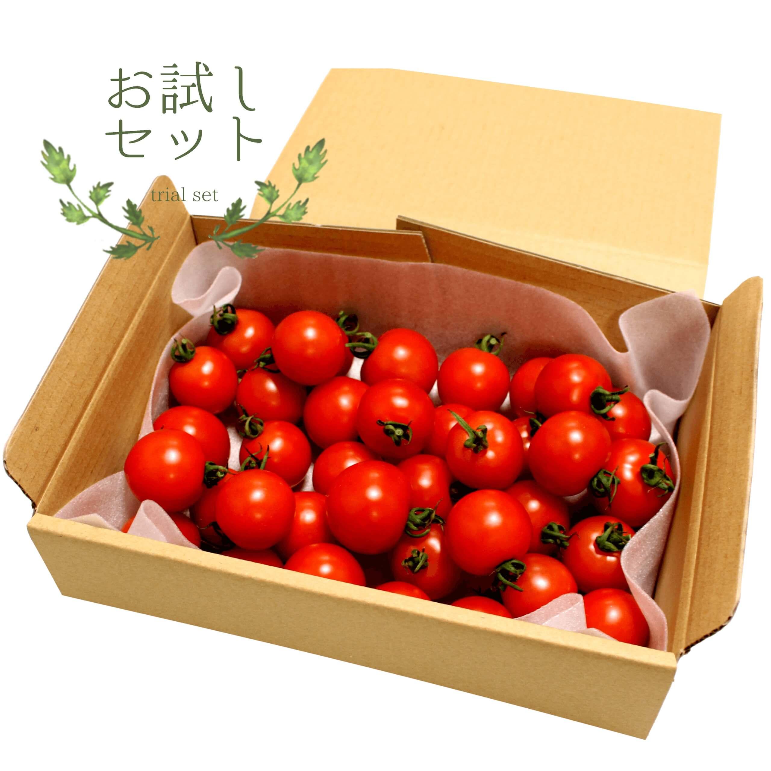 高原トマトお試しセット