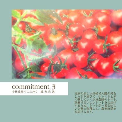 小林農園の産地直送新鮮な野菜をお届け
