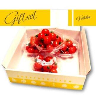 贈り物フルティカ高原トマトセット