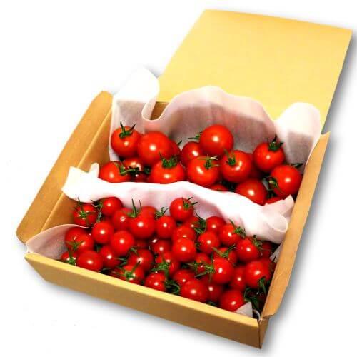 フルティカあまっこトマトセット