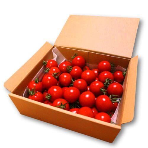 フルティカ高原トマト満足セット