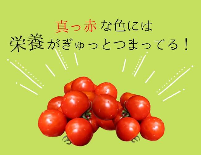 真っ赤なトマトの栄養成分