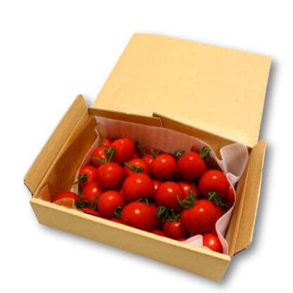 フルティカ1.2kgトマトセット
