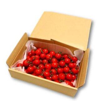 あまっこミニトマトセット