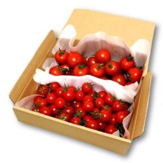 フルティカあまっこ食べ比べトマトセット