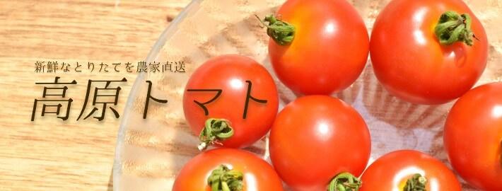 ご自宅用におすすめ新鮮なトマトセット