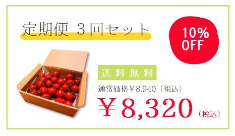 フルーツトマト定期便3回