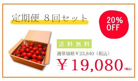 フルーツトマト定期便8回