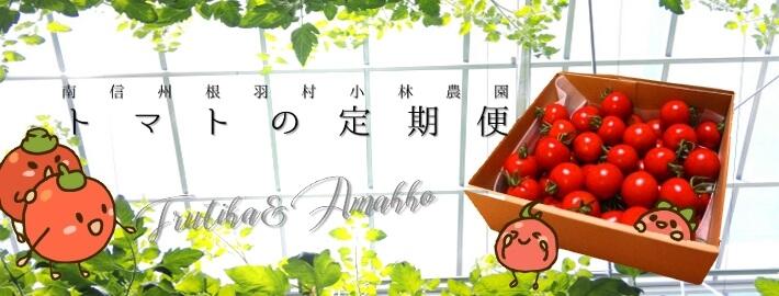 高原トマト定期セット