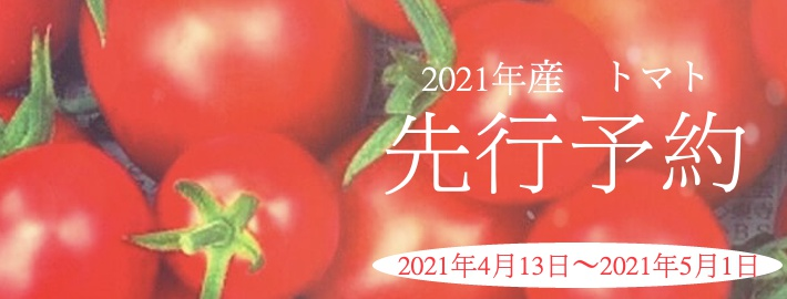 フルティカフルーツトマトの予約販売