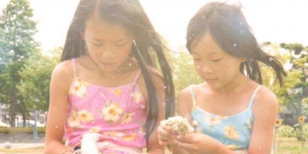 食卓に安心安全家族の笑顔根羽村高原トマト小林農園のこだわり